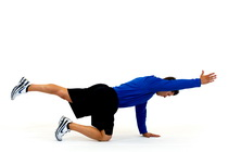 All Fours: opposite arm/opposite leg raises